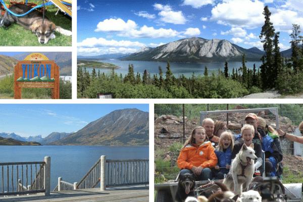6, Skagway White Pass train with Alaska Shore Tours