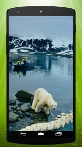 alaskalive-169x300, cruise trips to Alaska with Alaska Shore Tours