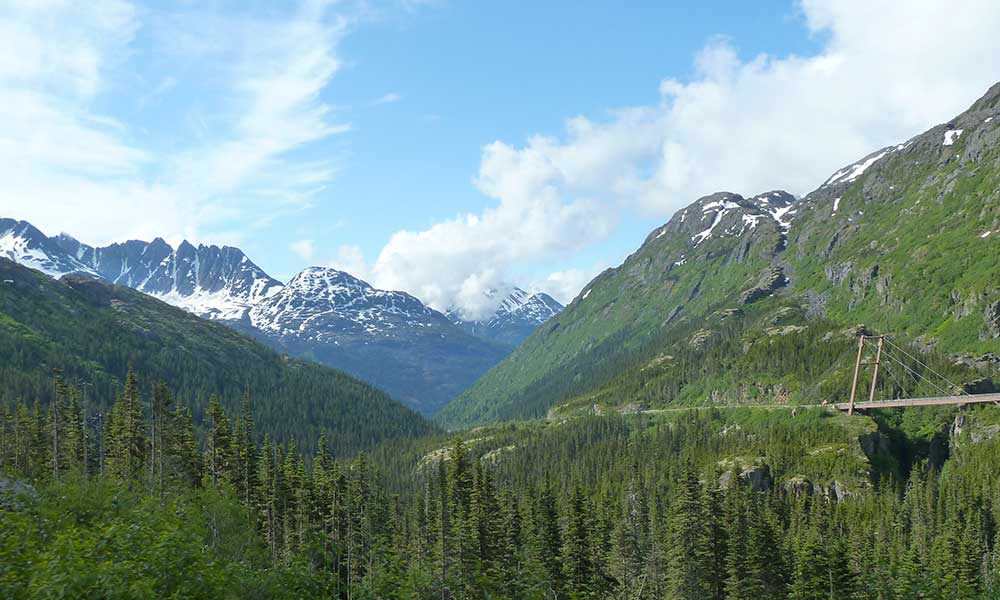 White Pass Summit and City Tour