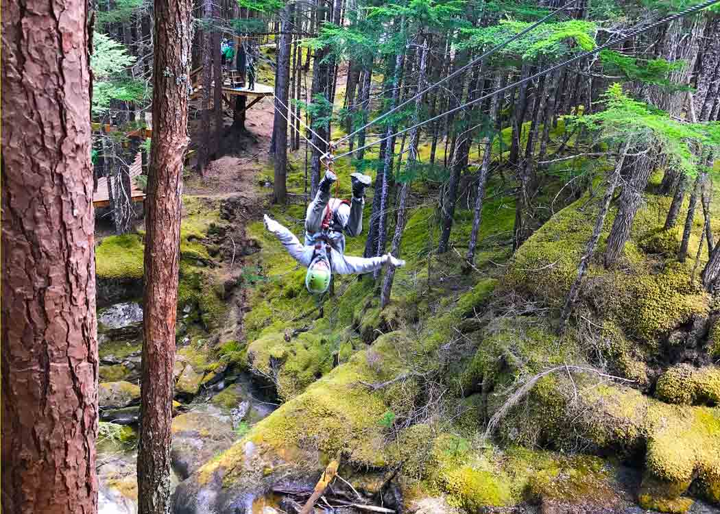 Grizzly Falls Zipline Alaska Shore Excursions