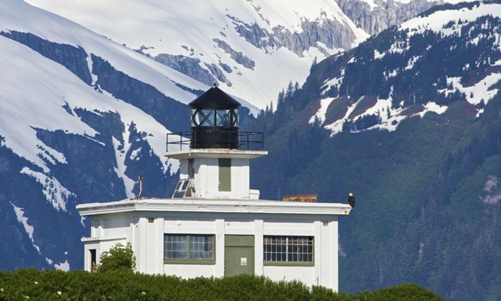 Juneau City and Glacier Tour