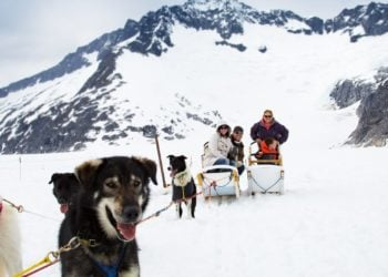 Helicopter & Dogsled Glacier Excursion with Alaska Shore Tours