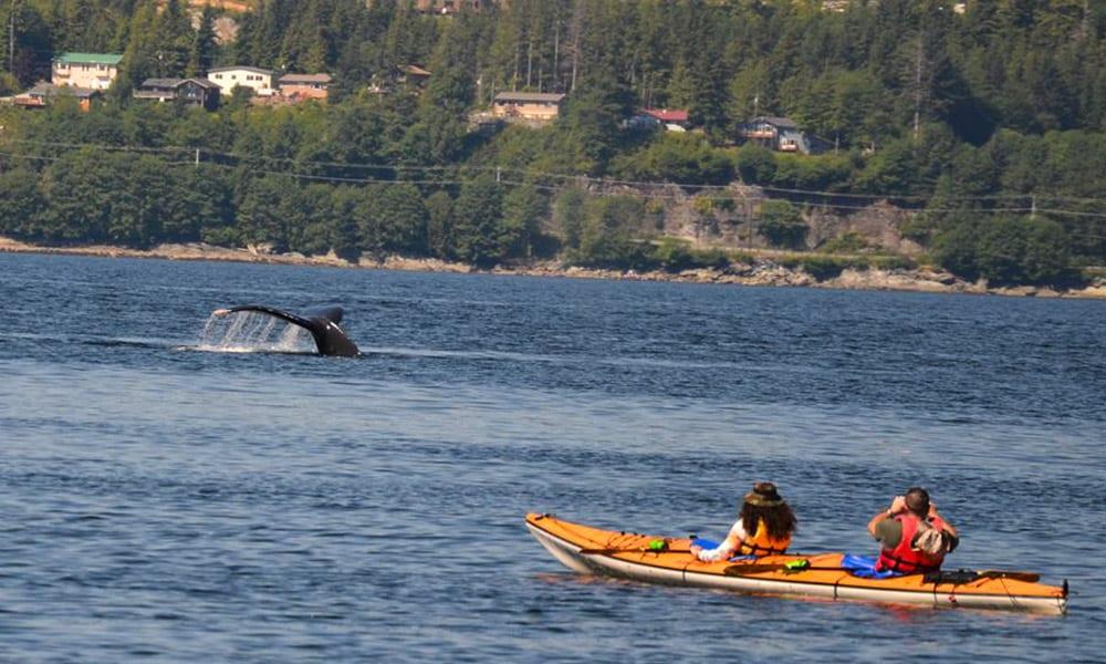 Ketchikan Sea Kayak