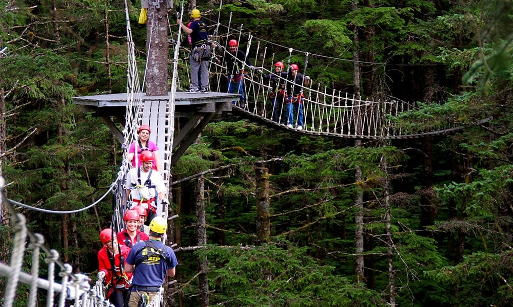 Rainforest Canopy and Zipline Expedition & Rainforest Canopy u0026 Zipline Expedition u2022 Alaska Shore Tours