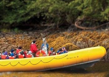 Rainforest Island Adventure with Alaska Shore Tours