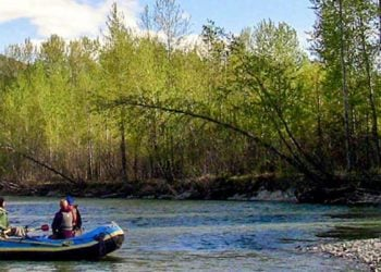 Scenic River Float Trip with Alaska Shore Tours