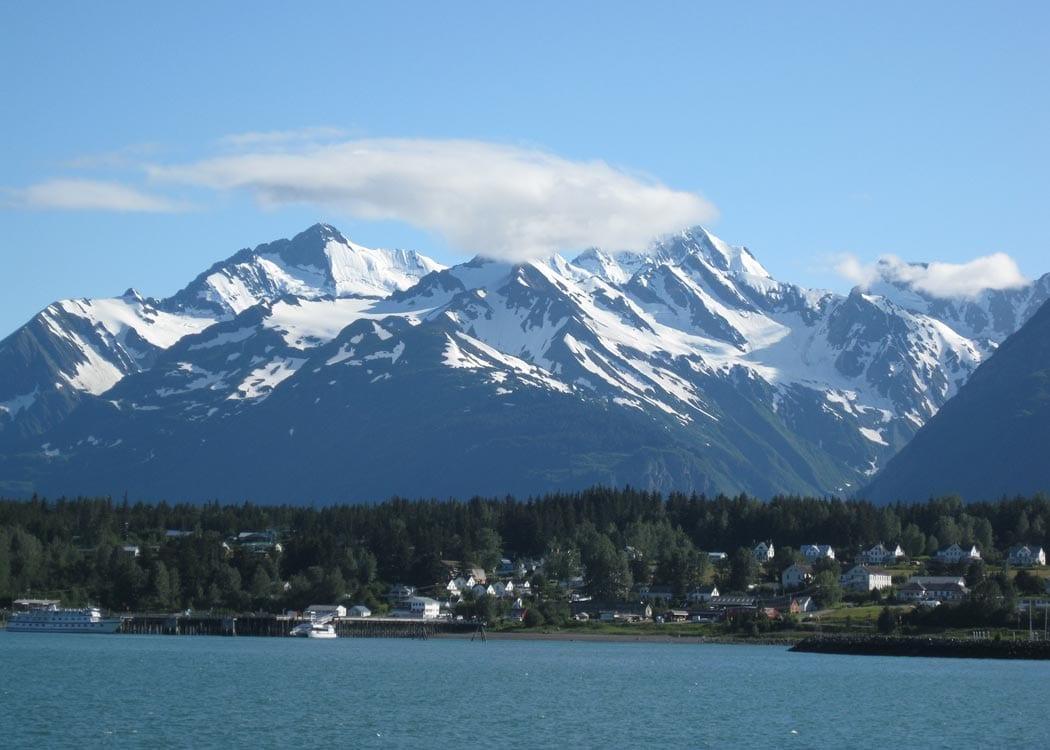Wildlife Safari & Bear Viewing with Alaska Shore Tours