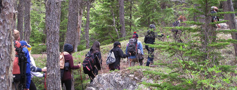 Skagway Adventure Hike with Alaska Shore Tours