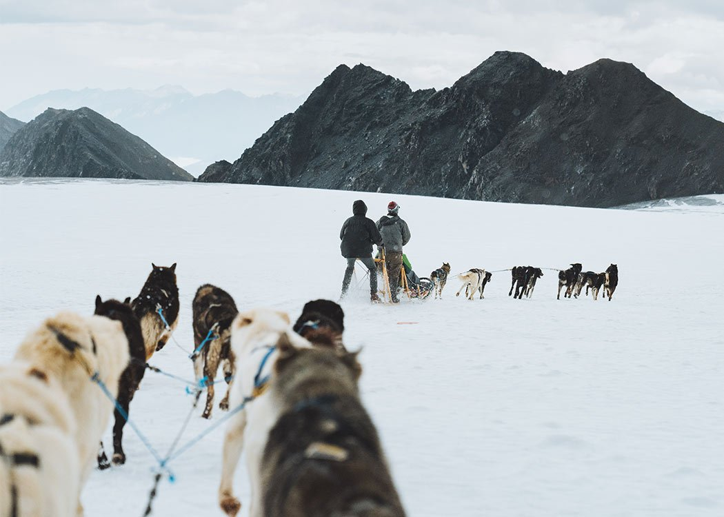 Anchorage Helicopter and Glacier Dogsled Tour with Alaska Shore Tours