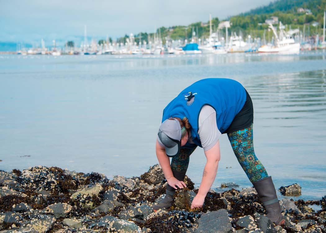 Private Premium Sitka Scenic Tour with Alaska Shore Tours