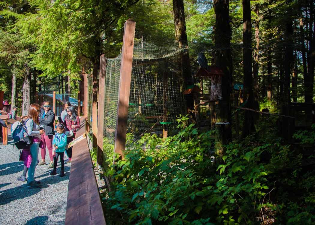 Premium Sitka Scenic Tour with Alaska Shore Tours