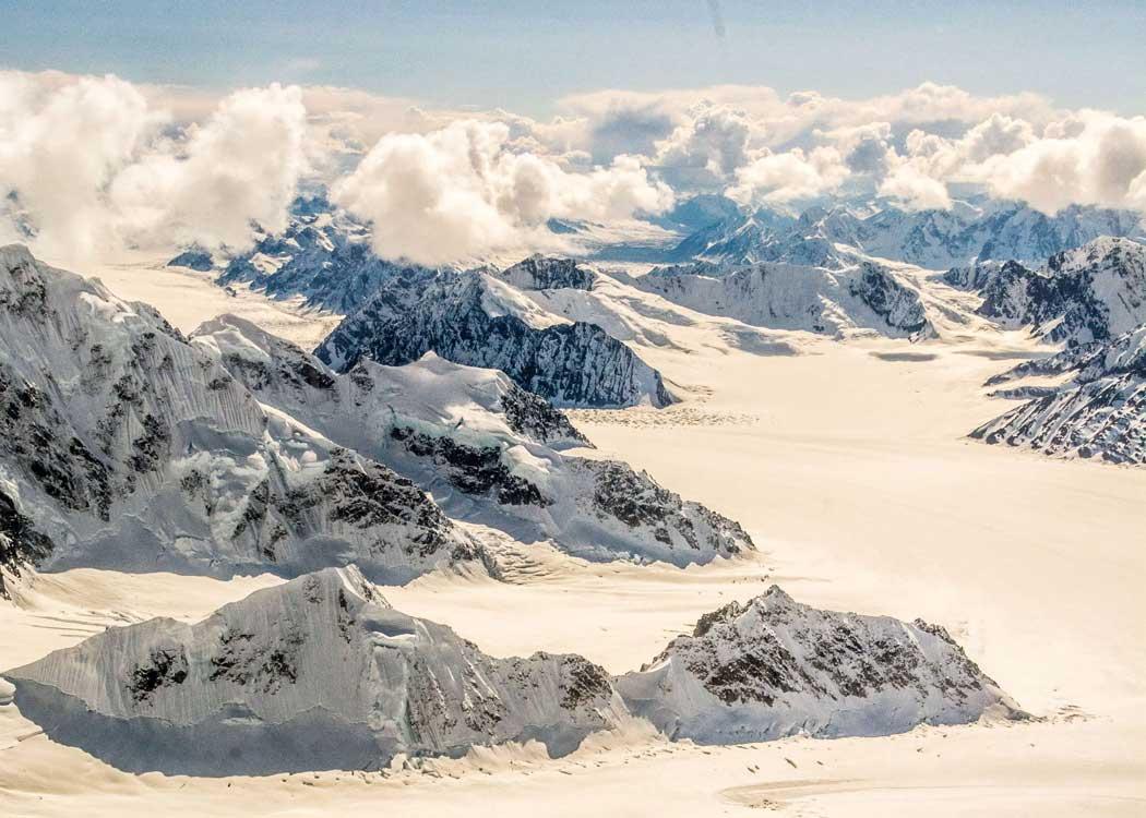 Denali Peak Experience with Alaska Shore Tours