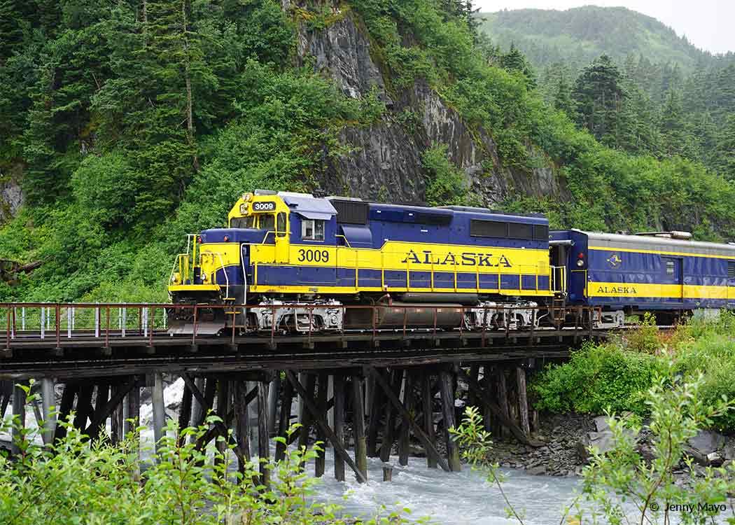 Bears, Trains, & Icebergs Tour with Alaska Shore Tours