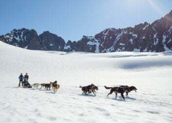 Anchorage Helicopter Glacier Dogsled & Lower Glacier Landing with Alaska Shore Tours