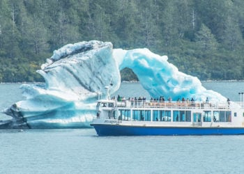 Glacier and Wildlife Day Tour with Alaska Shore Tours
